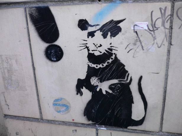 rat graffiti bling rat