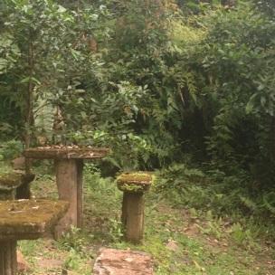 paronella-park-picnic-seats-2